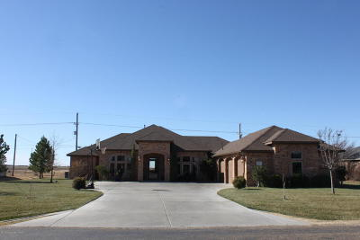 Panhandle Single Family Home For Sale: 1401 Pecan