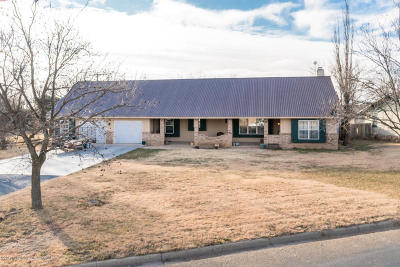 Carson County Single Family Home For Sale: 605 8th W St