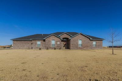Amarillo Single Family Home For Sale: 19850 Laramie Dr