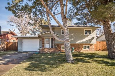 Panhandle Single Family Home For Sale: 1412 Maple