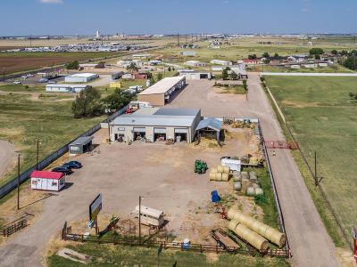 Randall County Commercial For Sale: 800 Fm1151