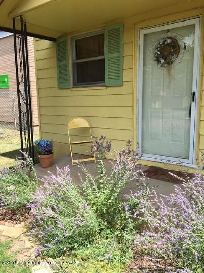 Panhandle Single Family Home For Sale: 308 Euclid Ave