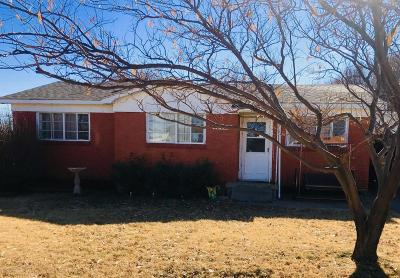 Fritch Single Family Home For Sale: 1010 Brennan Dr