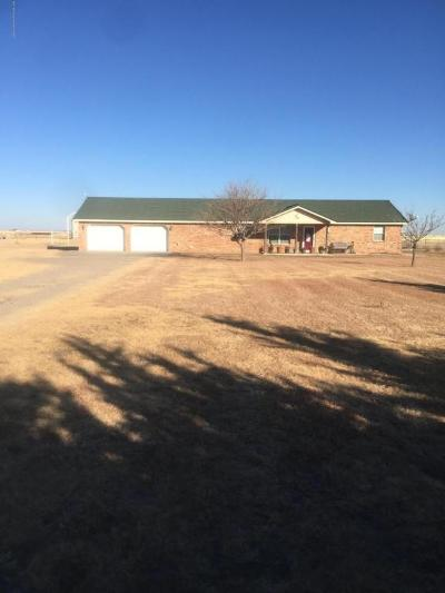 Carson County Single Family Home For Sale: 275 Fm 2575