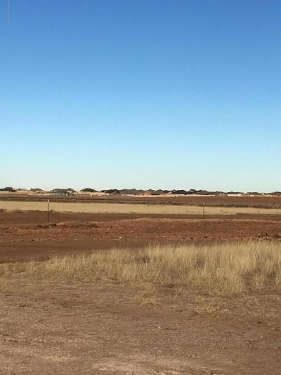 Amarillo Residential Lots & Land For Sale: 10250 Cessna Dr