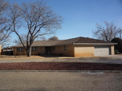 Borger Single Family Home For Sale: 221 Inverness