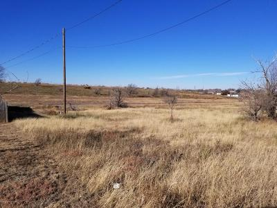 Potter County Commercial For Sale: Terry St