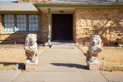 Potter County, Randall County Single Family Home For Sale: 2015 Teckla Blvd