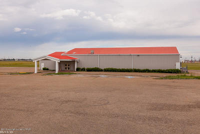 Amarillo Commercial For Sale: 8401 3rd SE Ave