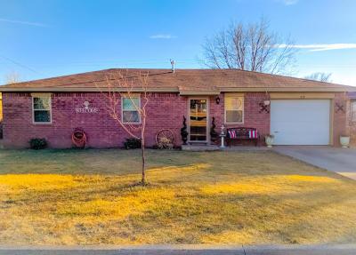 Hereford Single Family Home For Sale: 717 Thunderbird St.