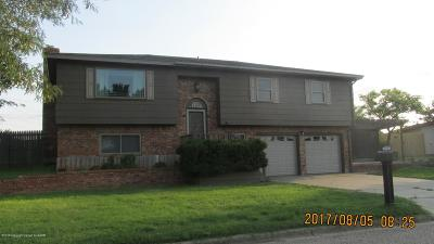 Borger Single Family Home For Sale: 1129 Coffee