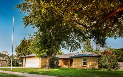 Panhandle Single Family Home For Sale: 1608 Pecan Ave