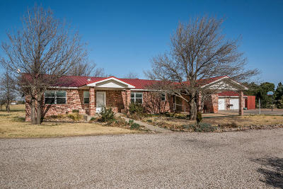 Amarillo Single Family Home For Sale: 104 Fm 2575