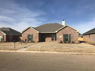 Amarillo Single Family Home For Sale: 2706 Bismarck Ave