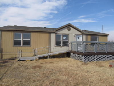 Fritch Single Family Home For Sale: 328 Karen Dr