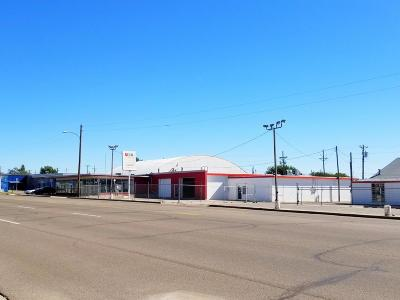 Potter County Commercial For Sale: 3208 SE 10th