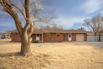 Amarillo Single Family Home For Sale: 3901 Cheyenne Ter