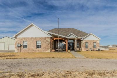 Bushland Single Family Home For Sale: 5800 Buffalo Springs Trl