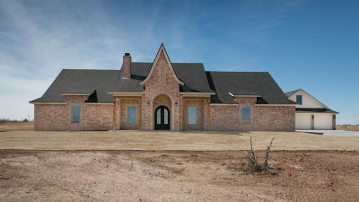 Amarillo Single Family Home For Sale: 14350 Canyon Pass Rd