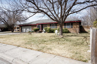 Amarillo Single Family Home For Sale: 3904 Barclay Dr
