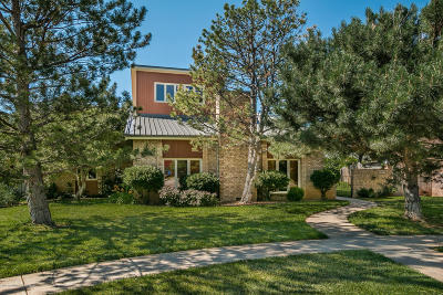 Amarillo Single Family Home For Sale: 3537 Goodfellow Ln