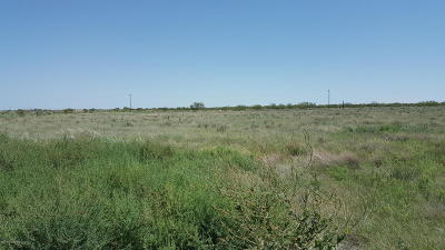 Fritch Residential Lots & Land For Sale: 40938 Sh 136
