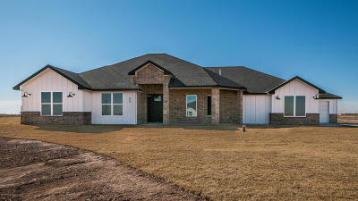 Randall Single Family Home For Sale: 10251 Beechcraft