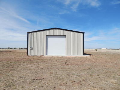 Armstrong County, Randall County Commercial For Sale: 2112 Venetia Rd