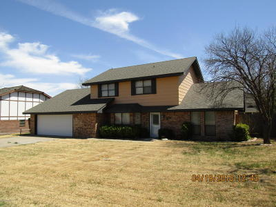 Borger Single Family Home For Sale: 623 Skyline Dr