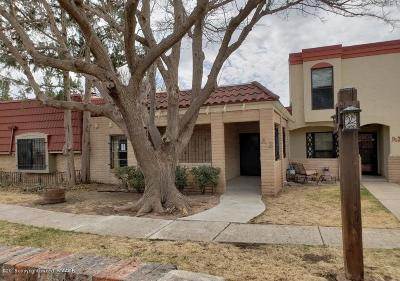Amarillo Condo/Townhouse For Sale: 3200 Fleetwood A-2 Dr