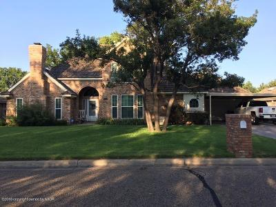 Borger Single Family Home For Sale: 217 Salina St