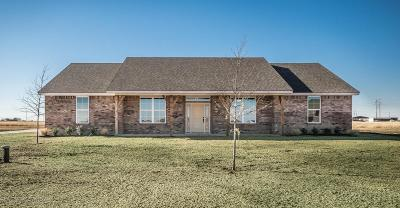 Amarillo Single Family Home For Sale: 8310 Blue Duck