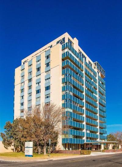 Amarillo Condo/Townhouse For Sale: 2028 Austin S St