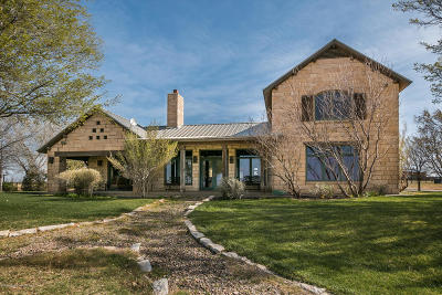 Amarillo Single Family Home For Sale: 3001 Hester Rd