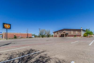 Amarillo Commercial For Sale: 5331 Amarillo Blvd