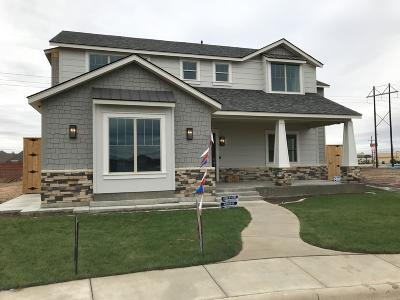 Randall County Single Family Home For Sale: 8411 Georgetown Dr