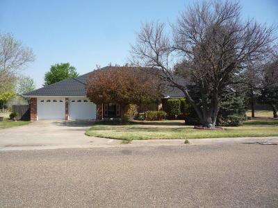 Borger Single Family Home For Sale: 8 Cobblestone Ln