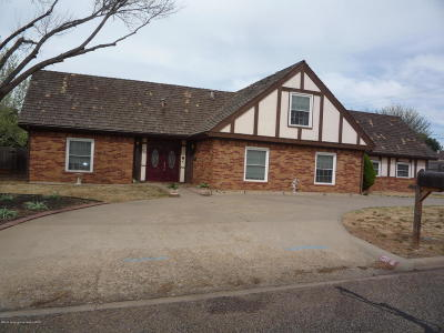 Borger Single Family Home For Sale: 239 Salina St