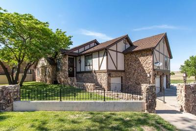Amarillo Single Family Home For Sale: 9 Country Club Dr