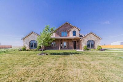 Amarillo Single Family Home For Sale: 8720 Paintbrush Dr
