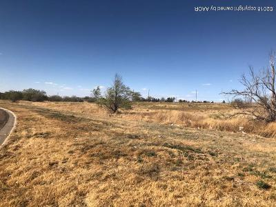 Amarillo Residential Lots & Land For Sale: 1631 N Polk St