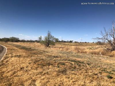 Amarillo Residential Lots & Land For Sale: 204 N Jefferson St