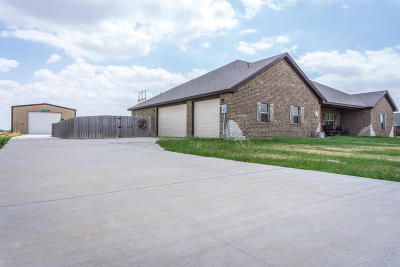 Potter County Single Family Home For Sale: 19301 Laramie Dr