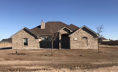 Amarillo Single Family Home For Sale: 9750 Help Ln