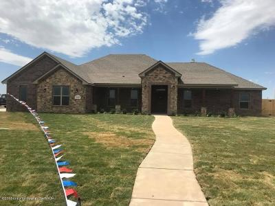 Potter County Single Family Home For Sale: 2450 Blue Springs