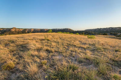 Amarillo Residential Lots & Land For Sale: 15750 Canyon Pass Rd