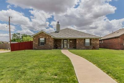 Potter County Single Family Home For Sale: 9812 27th Ave
