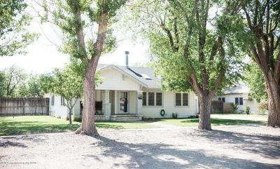 Claude Single Family Home For Sale: 216 Cherry S St