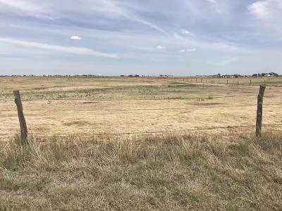 Amarillo Residential Lots & Land For Sale: 14300 Georgia South St