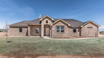Amarillo Single Family Home For Sale: 9350 Help Ln